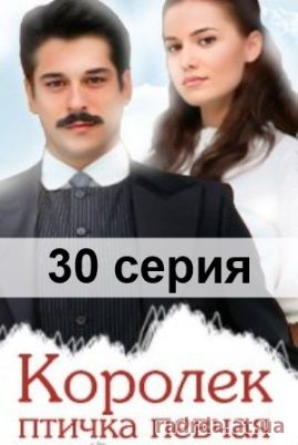 «Королек-птичка Певчая 20 Серия» / 2014